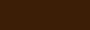 Willa Zator – noclegi Oświęcim Logo